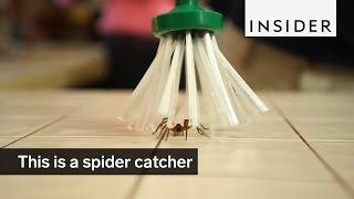 Смотреть онлайн Хорошее изобретение для поимки пауков