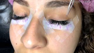 How to do Russian Volume 3D Eyelash Extensions Using Pre made Volume Fans