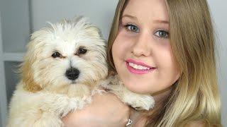 Frmheadtotoe The Pet Haul самые популярные видео