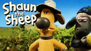 Perusak Suasana [Spoilsport] | Shaun the Sheep | Full Episode | Funny Cartoons For Kids