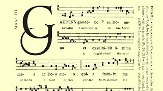 "INTROIT • ""Gaudens Gaudebo"" — Immaculate Conception (DEC 8th)"