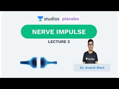 L2: Nerve Impulse  | Neural Control and Coordination (Pre-Medical-NEET/AIIMS) | Dr. Anand Mani