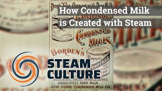 How Condensed Milk is Created with Steam - Steam Culture