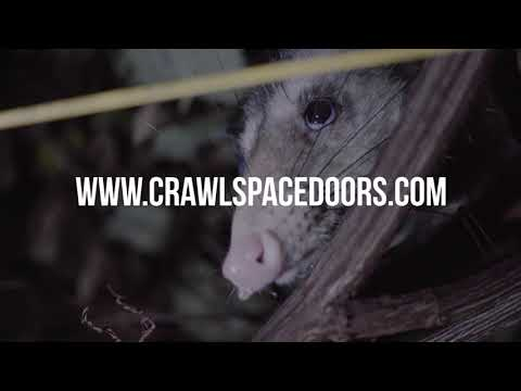 Crawl Space Door – Does Your Crawlspace Needs Attention?