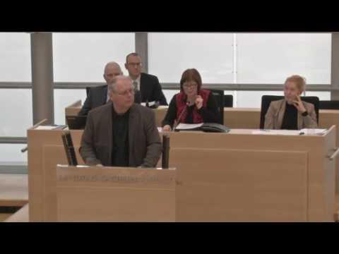 AfD-Anwalt Farle blamiert sich mit alternativer Redezeit (Landtag SA #1)