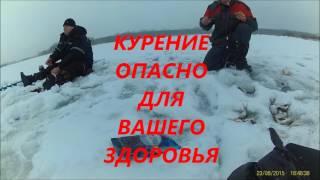 Отчет о рыбалке в самаре луговое