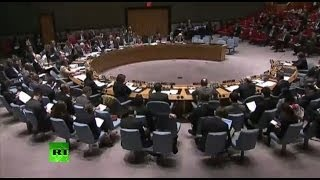 Совет безопасности ООН по Украине 29-30 апреля 2014