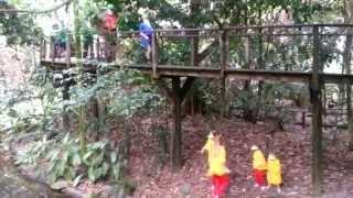 Wildlife Habitat 'Heigh Ho' Snow White and the Seven Dwarfs