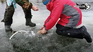 Платная рыбалка в москве зимой