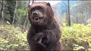 Animatronic Bear Suit By SFX Studio Inc.