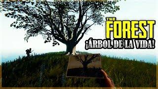 EL SECRETO QUE ESCONDE EL ARBOL -  THE FOREST