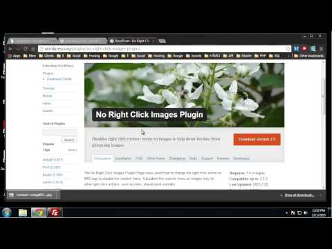 Learn Complete Wordpress Security - Chapter 18 - Protecting Images