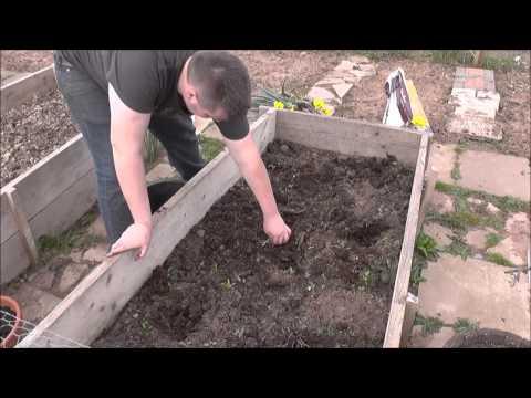 , title : 'Steve's Allotment Episode 5 - Preparing the Carrot Bed'