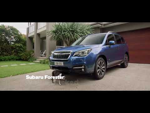 Subaru  Forester Паркетник класса J - рекламное видео 4