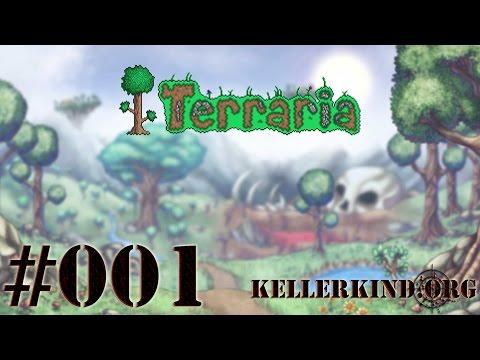Terraria #1 – Das Abenteuer beginnt! ★ Let's Play Terraria [HD|60FPS]
