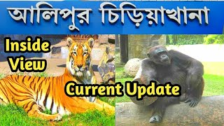 Alipore Zoo Inside View After Lockdown Corona Guidelines for Zoo Visitors|Alipore Zoo Entire Details