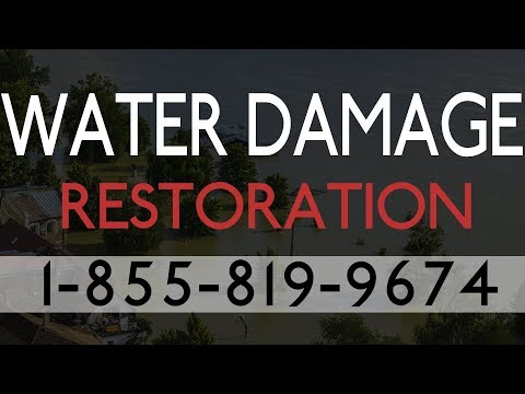 Water Damage Restoration Town N Country FL |  Best Local Water Damage Restoration Services