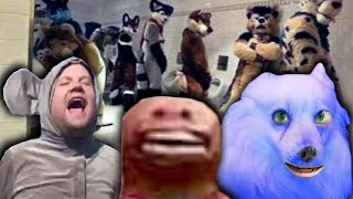 Only furries can watch this. (YIAY #582)