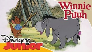 Freundschaftsgeschichten mit Winnie Puuh: Ruhs neues Spielzeug | Disney Junior