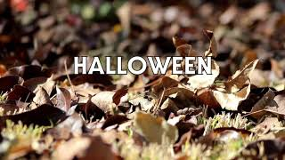 Halloween: Odium