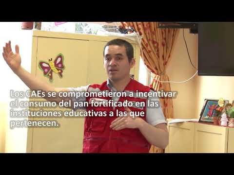 II Jornada de capacitación dirigidas a los CAEs de Lima Metropolitana