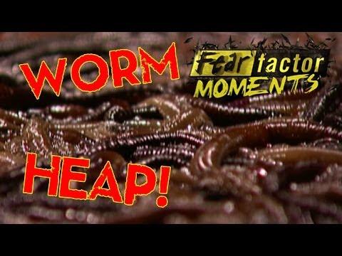 Hindi tulad ng mga worm ng Ascaris