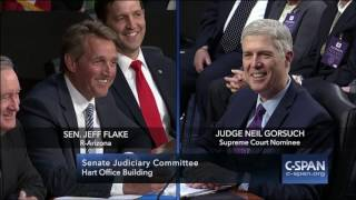 "Question to Gorsuch: ""Would you rather fight 100 duck-sized horses, or 1 horse-sized duck?"" (C-SPAN)"