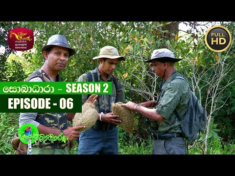 Sobadhara - සොබාධාරා | Season- 02 | Episode 06 | 2018-02-09 | Rupavahini Documentary