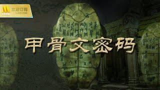 【1080P Full Movie】《甲骨文密码》/  The Code on Oracle Bones 甲骨片蕴藏先王宝藏 日军及国共特务展开夺宝大战( 罗忆楠 / 许铂岑)