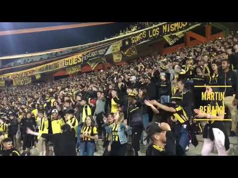 """""""""""Gallina te juro no me voy a olvidar"""" - Hinchada de Peñarol (vs river)"""" Barra: Barra Amsterdam • Club: Peñarol"""