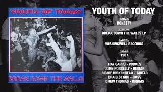 YOUTH OF TODAY - Break Down The Walls LP - Wishingwell Records (1987)