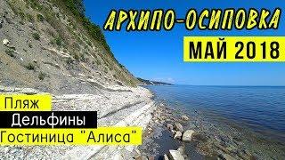 На Черное море - МАЙ 2018 | Архипо-Осиповка, пляж, гостевой дом Алиса | Дельфины в море