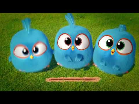 Download Angry Birds Blues Joy Ride S1 Ep16 Video 3GP Mp4