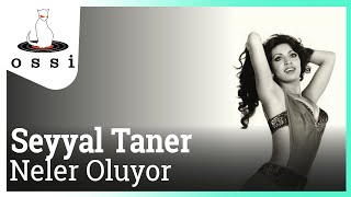 Seyyal Taner / Neler Oluyor