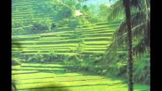 The Balinese traditional Bambu & flute Music.