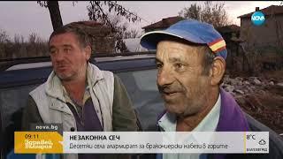 Незаконна сеч! Десетки села алармират за бракониерски набези (15.11.2018г.)
