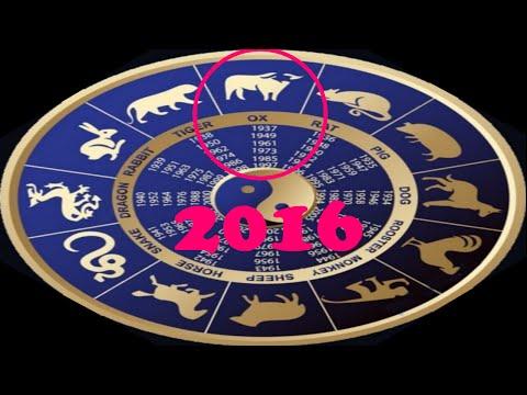 Любовный гороскоп на 2017 телец петух