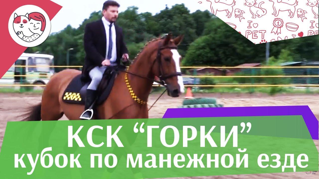 Летний кубок КСК Горки по манежной езде КЮР часть 6 на ilikepet
