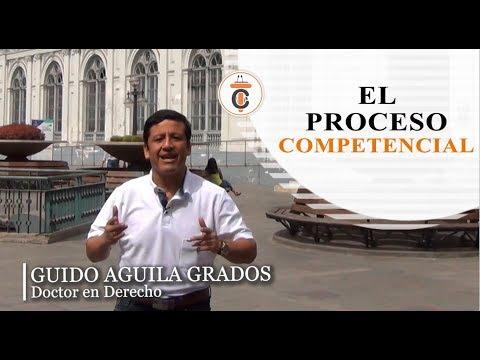EL PROCESO COMPETENCIAL - Tribuna Constitucional 107 -  Guido Aguila Grados
