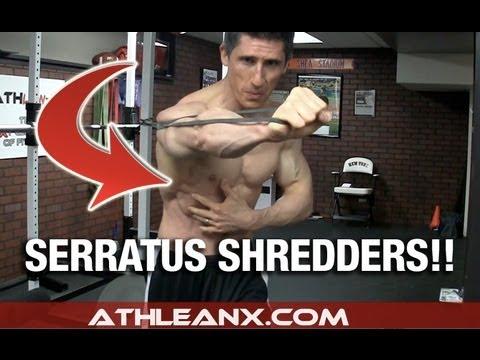 Nous affermissons les muscles pectoraux par les haltères
