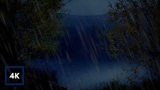 Abendregen am See | Sanfte Regengeräusche auf Blättern mit abgedunkeltem Bildschirm zum Schlafen