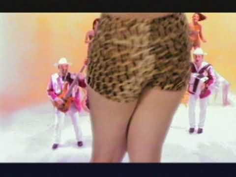 Los Tigrillos - Mira Oye (Video Oficial)