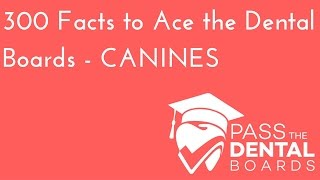 300 Dental Anatomy Facts PART 3 - CANINES - NBDE Part 1
