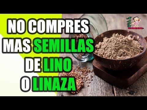 Atención: No Compres Más semillas de Lino o Linaza. Aquí te explicamos Porque  ahorrarás tu dinero.