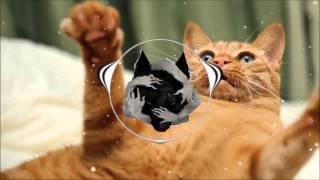 Bali Bandits - Mr. Meow
