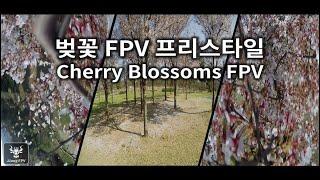 "(2.7K) FPV FreeStyle; Cherry Blossoms | 서재체육공원 벚꽃은 처음이지? | FPV 드론 프리스타일(3"" 씨네후프) | JJang FPV"