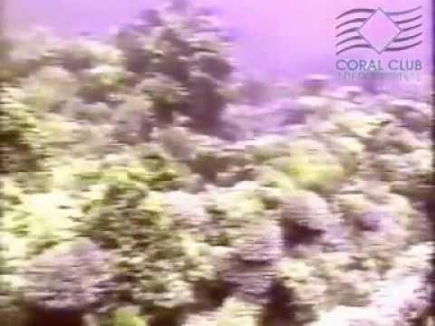 Prosztata masszázs egy ember nézni a videót