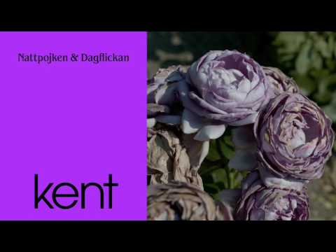Kent - Nattpojken & Dagflickan (Official Audio)