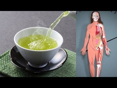 Nach dem Verzehr von grünem Tee passiert das in deinem Körper!