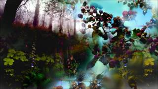DKC2 Orchestral Remix: Forest Interlude & Stickerbrush Symphony